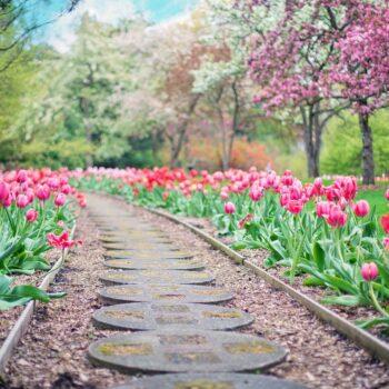 Jak urządzić ogród w stylu góralskim