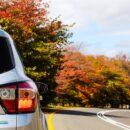 Jakie informacje warto znać, gdy planujesz wypożyczyć auto